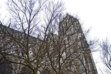Lateral árboles Catedral de San Miguel y Santa Gúdula centro Bruselas