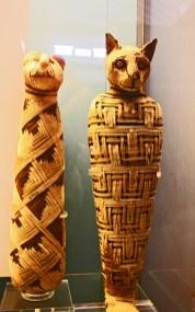 Gato Abydos Nilo Egipto Museo Británico Londres