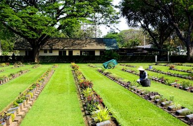 Trabajador plantas cementerio de Guerra Kanchanaburi