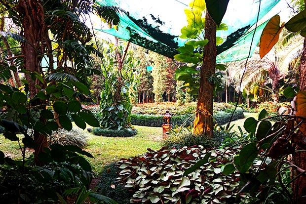 Jardines resort hotel resort Lampang