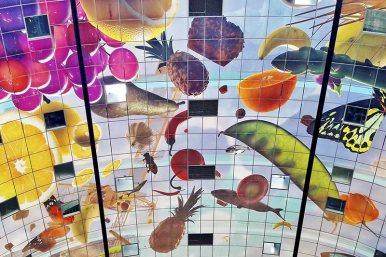 Hologram frutas techo Mercado central Rotterdam