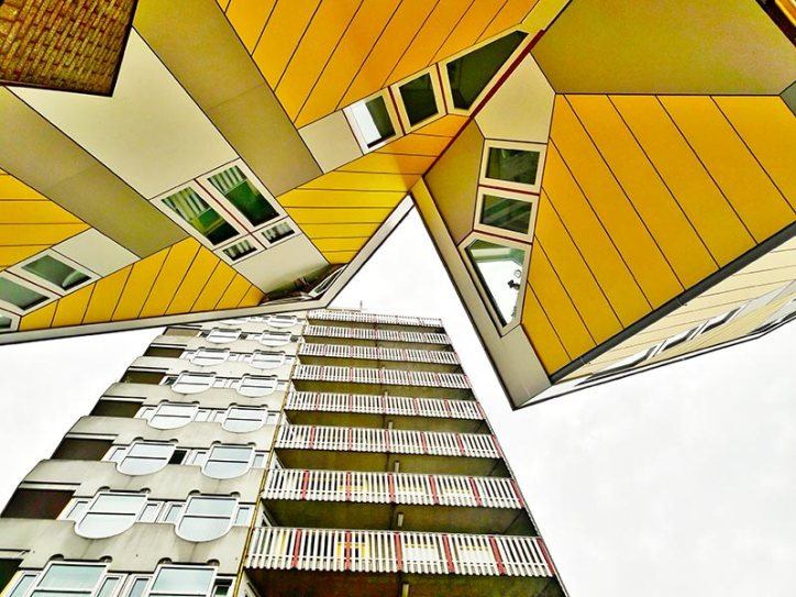 Casas Cubo Piet Bloom Rotterdam