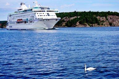 Crucero noruego cisne aguas archipiélago Estocolmo Suecia