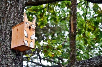 Nido pájaros madera forma gato árbol bosque Fjaderholmarna