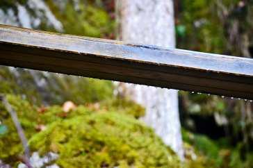Detalle barandilla gotas cayendo Cascada Triberg Alemania