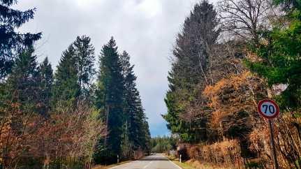 Carretera ruta famosa Schwarzwaldhochstrasse bosques vegetación frondosa Selva Negra Alemania