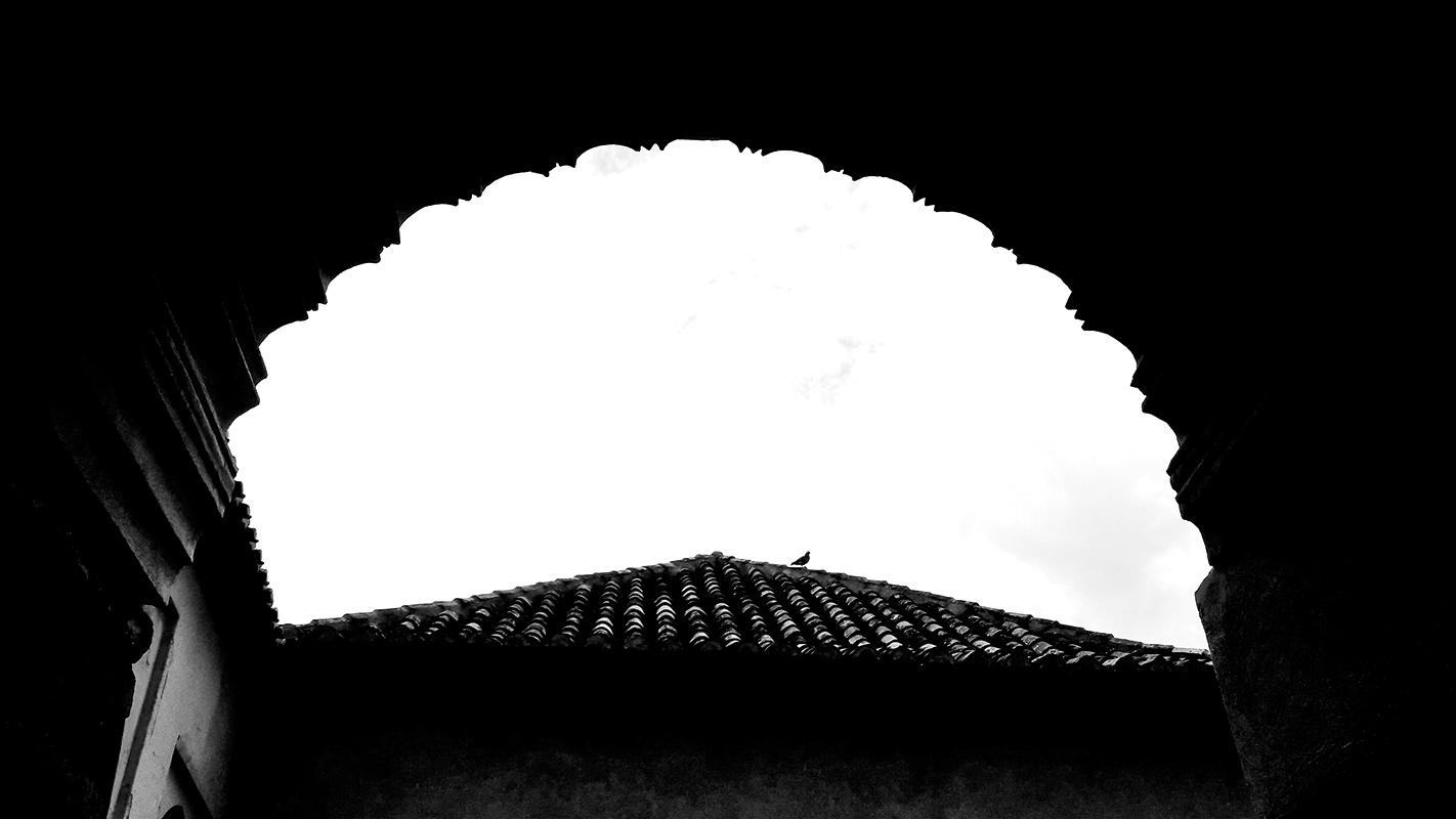 Paloma tejado cielo arte árabe Alcazaba Malaga blanco y negro