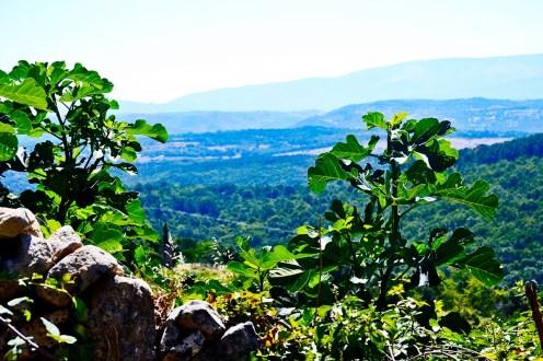 Paraje natural sierra Mogarraz Salamanca Castilla y León