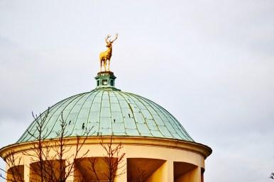 Escultura ciervo oro cúpula edificio centro histórico Stuttgart
