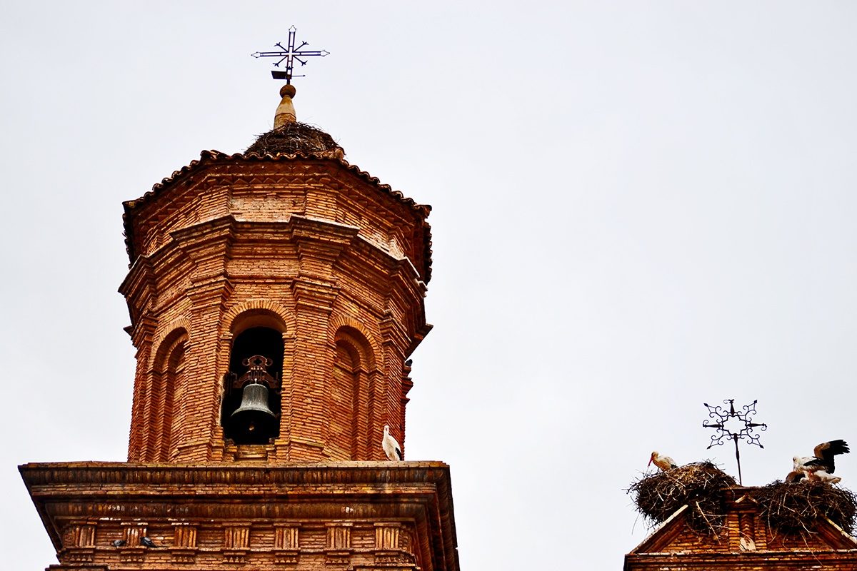 Torre campanario cigüeñas nidos Colegiata Alfaro La Rioja