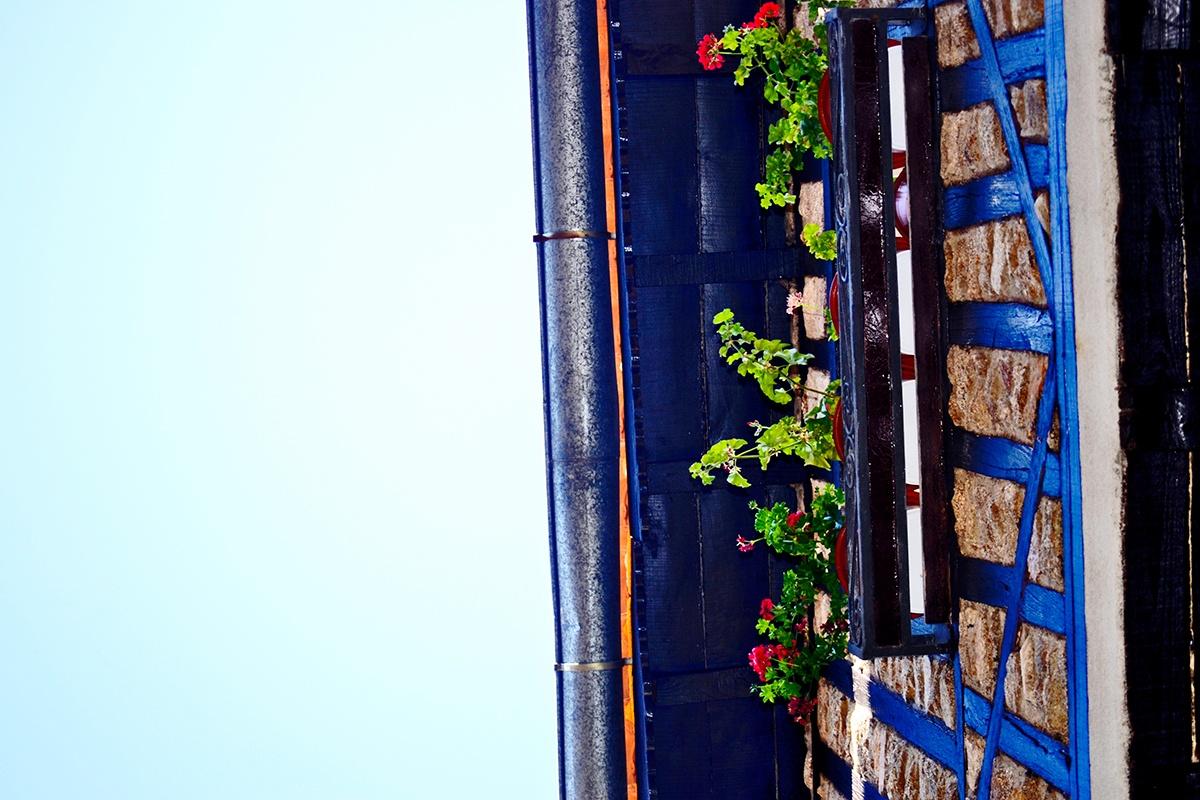 Perspectiva fachada flores La Alberca