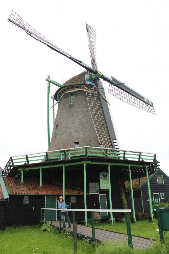 excursiones desde Ámsterdam