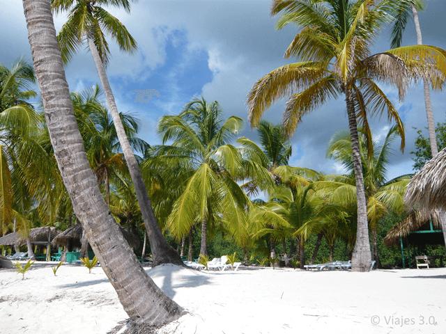 Isla Saona Canto a la Playa Cocoteros