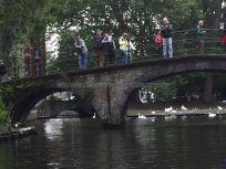 puentes para admirar los canales y a los cisnes