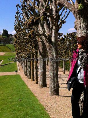 Castillos Loira - Villandry - jardines