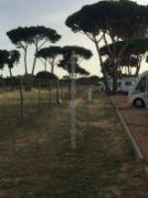 Falésia 23 Lisboa Algarve 201904