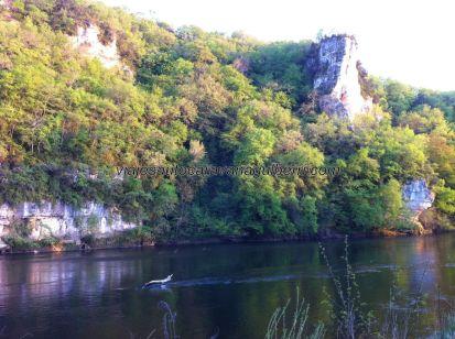 levantarte cada mañana con estas vistas es muy, pero que muy, estresante; nuestro amigo el cocodrilo (así lo bauticé la primera vez que vi este tronco sobre el río) no se mueve de su sitio al paso incesante de canoas y kayaks llenos de turistas dejándose llevar por el río y por el entorno