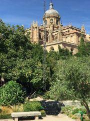 Catedral desde Huerto Calixto y Melibea