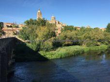 Catedral desde Puente Romano sobre Río Tormes