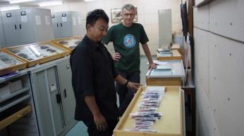 En la colección ornitológica del instituto indonesio de ciencias (LIPI), con Christophe Thebaud y el colaborador indonesio Hidayat.