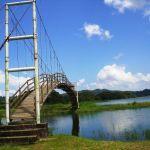 Puente en el lago yojoa