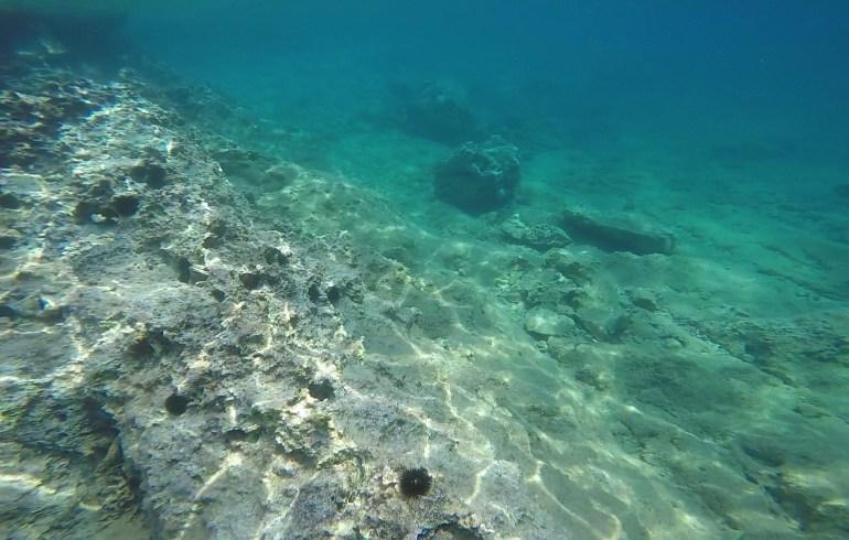 Snorkel. Limeni, península de Mani, Peloponeso (Grecia)