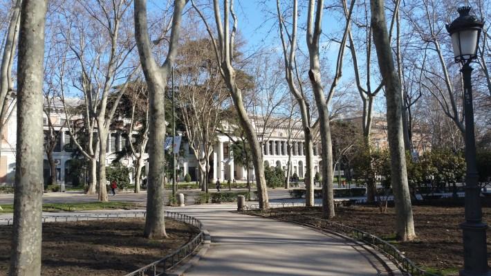 Paseo del Prado. Madrid (España)