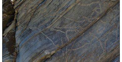 yacimiento-arqueologico-siega-verde