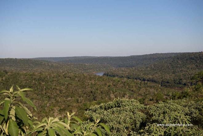 Misiones-selva