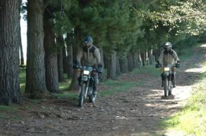 Motos de los Forestales