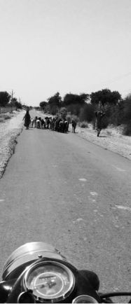 carretera india