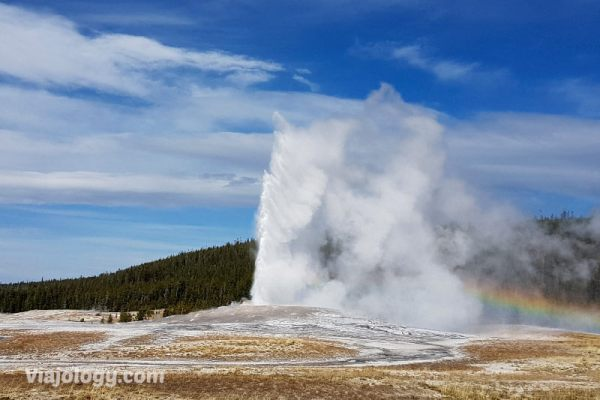 Cómo ver un Géiser de Yellowstone en erupción - Viajology.com