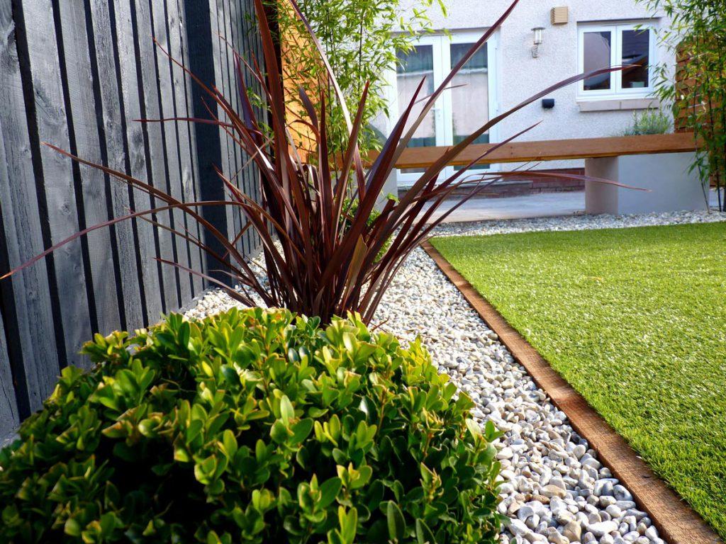 A Contemporary Low Maintenance Garden