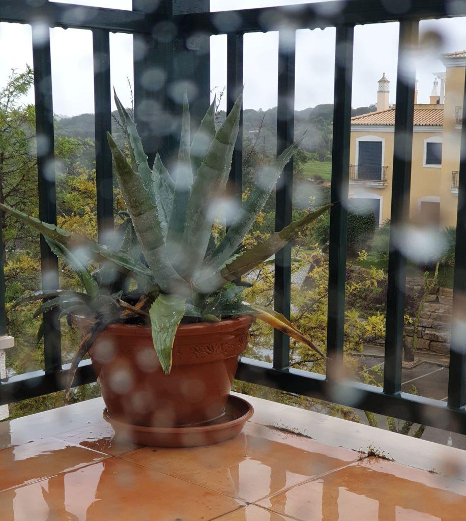 rain, Kotitoimisto etätyöhön kotoa käsin