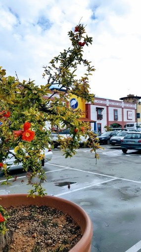 Algarve Shopping. Portugalin katukuva