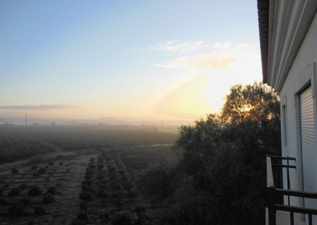 Uuden elämän alku Uuden elämän ensimmäisen auringonnousu.