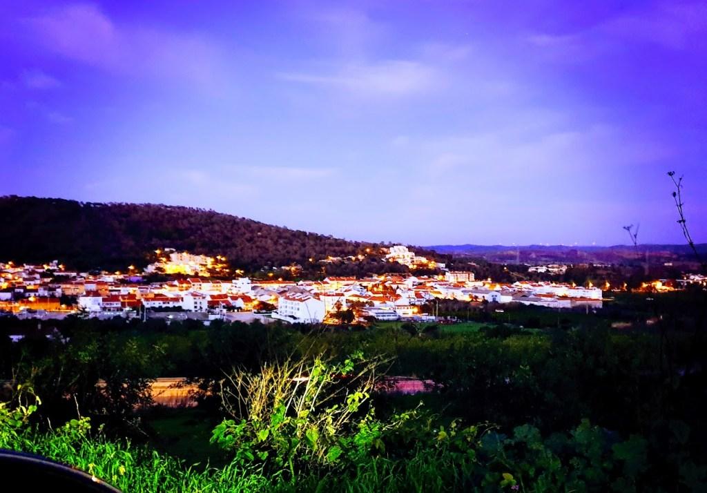 Portugalin vuosi