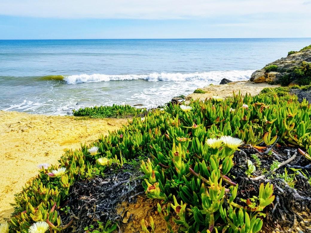 Meri - Päivän inspiraatiokuva, Oura