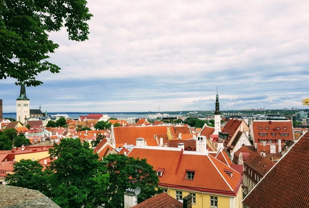 Myyttejä ja totta Virosta, Kohtuotsan näköalapaikka
