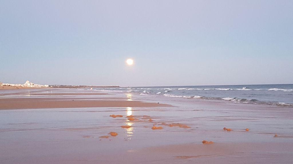Ihan väärin käsitelty - Kumpi on tärkeämpi: aurinko vai kuu? Kuu, koska se paistaa silloin, kun aurinko on laskenut.
