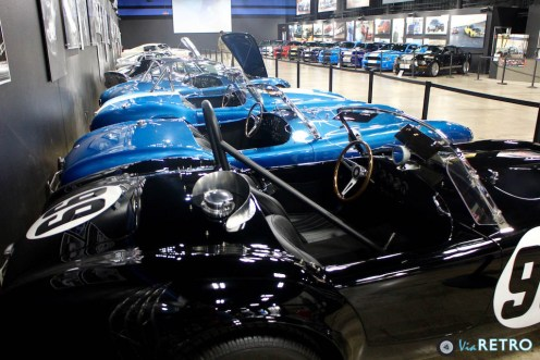 Shelby Heritage - 5