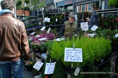Columbia Road Flower Market 1