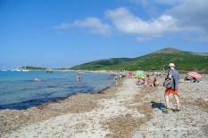 Barcaggio platja buscant lloc