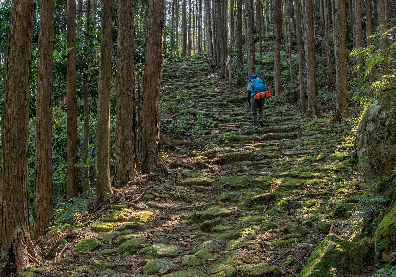 kumano-ancient-road