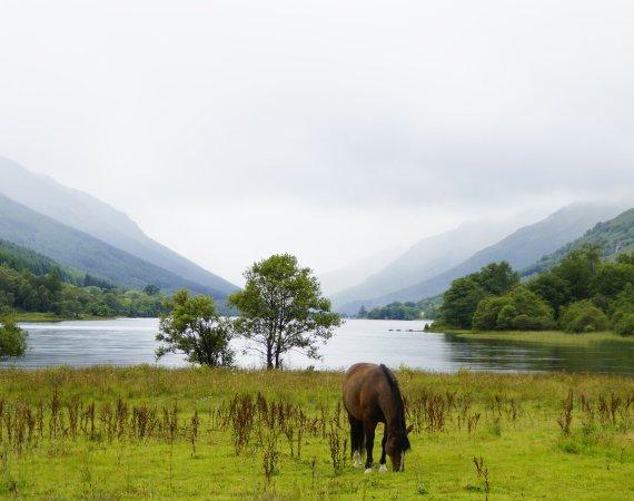 Turisme actiu i ecoturisme a Stirling i Trossachs