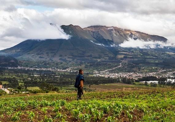Andes equatorians, Amazones i Galápagos