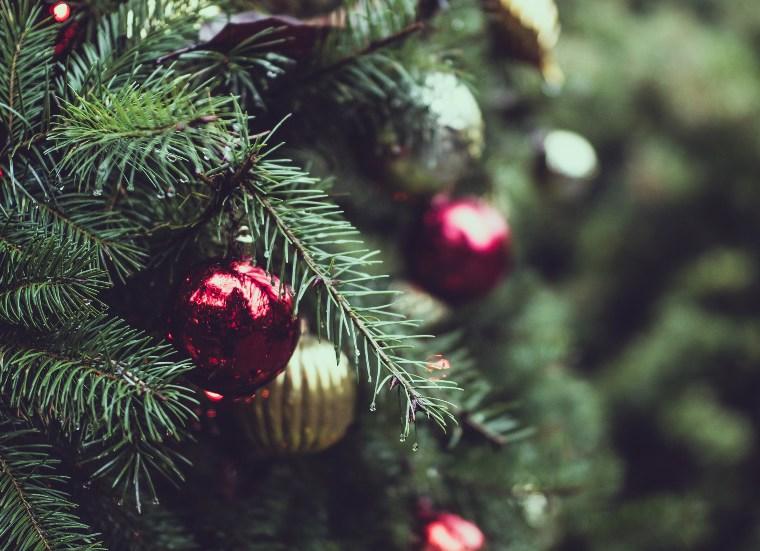 Nadal Regals Viatja pel Mon