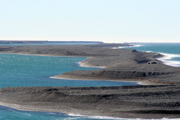 Punta Cantor