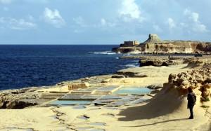 2016-11-21 (Eli a salines de Marsalforn a Gozo)