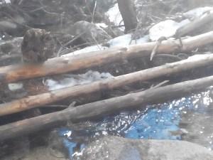 troncos en río con nieve s